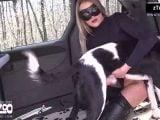 dogwoman artofzoo – Beauty and the Beasts 2