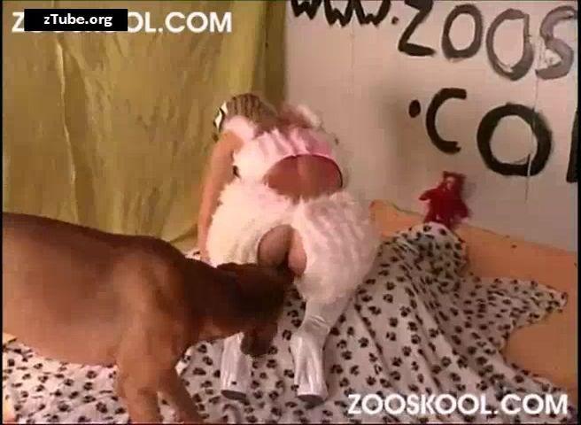 zooskool Video archives zTube