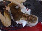 Sex Slavery scat girl – blonde nurse video