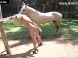 zoosbook horse zoofilia by blonde Many vids