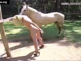 zoosbook horse zoofilia by blonde Many vids