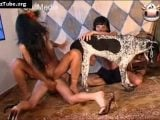 k9lady zoo sex – foursome zooskool free bestiality