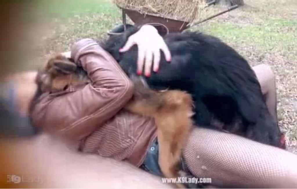 Zootaboo .:: Zoo